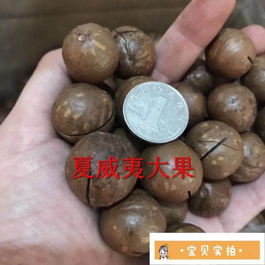 义乌夏威夷果批发 摆地摊巴旦木批发价格 摆地摊卖坚果怎么样